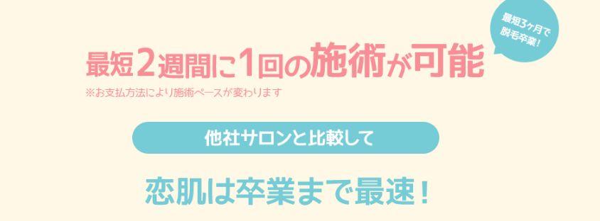koihada202.jpg